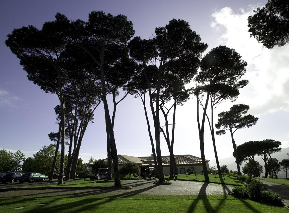 Grands arbres sur le parcours de Palheiro