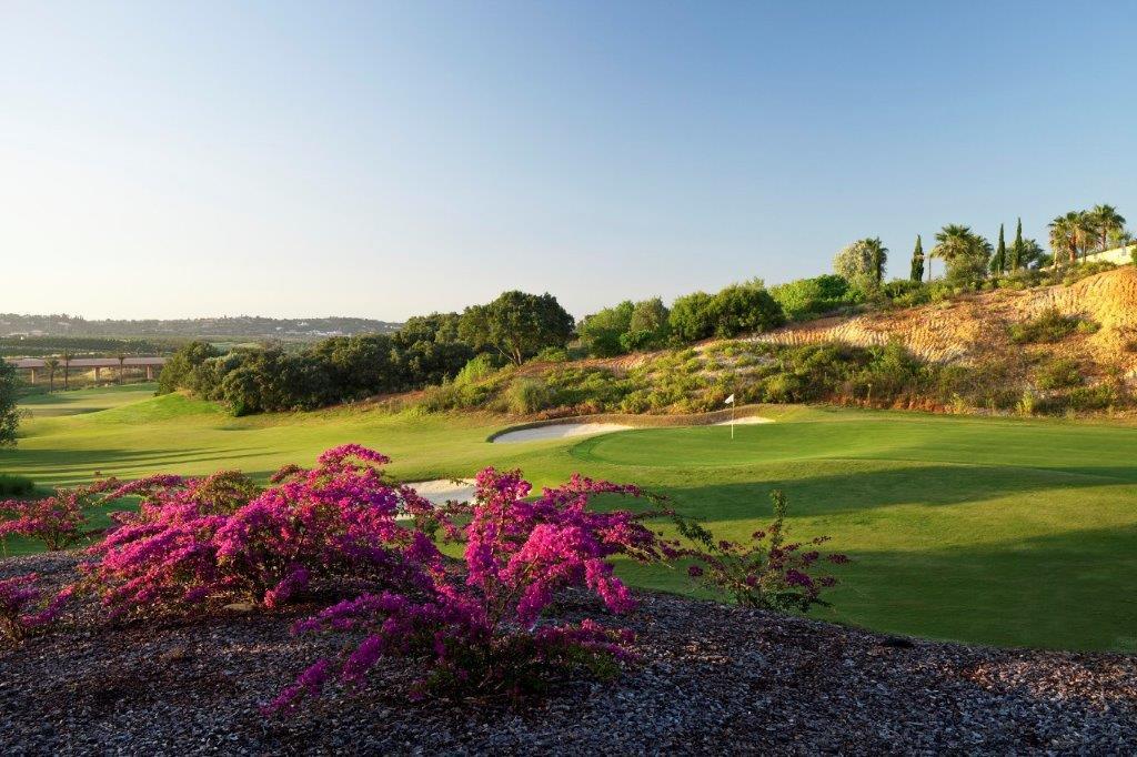 Green du golf Oceonico O'Connor au Portugal