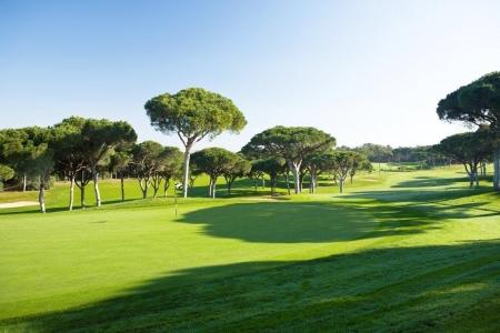 Green du golf Oceanico Old au Portugal
