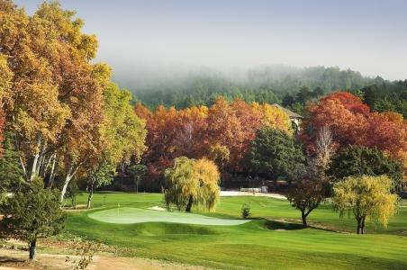 Green et arbres d'automne sur le parcours de Vidago Palace au Portugal