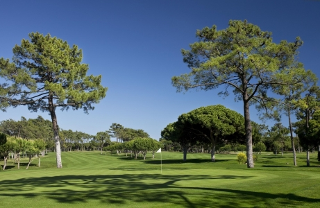 Les arbres du golf The Old Course Golf Club au Portugal