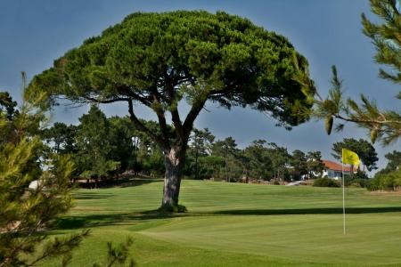 Large green sur le parcours de Golf do Estoril au Portugal